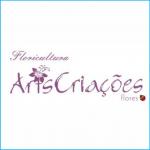 Arts Criações